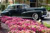 Cadillac1941series60_341